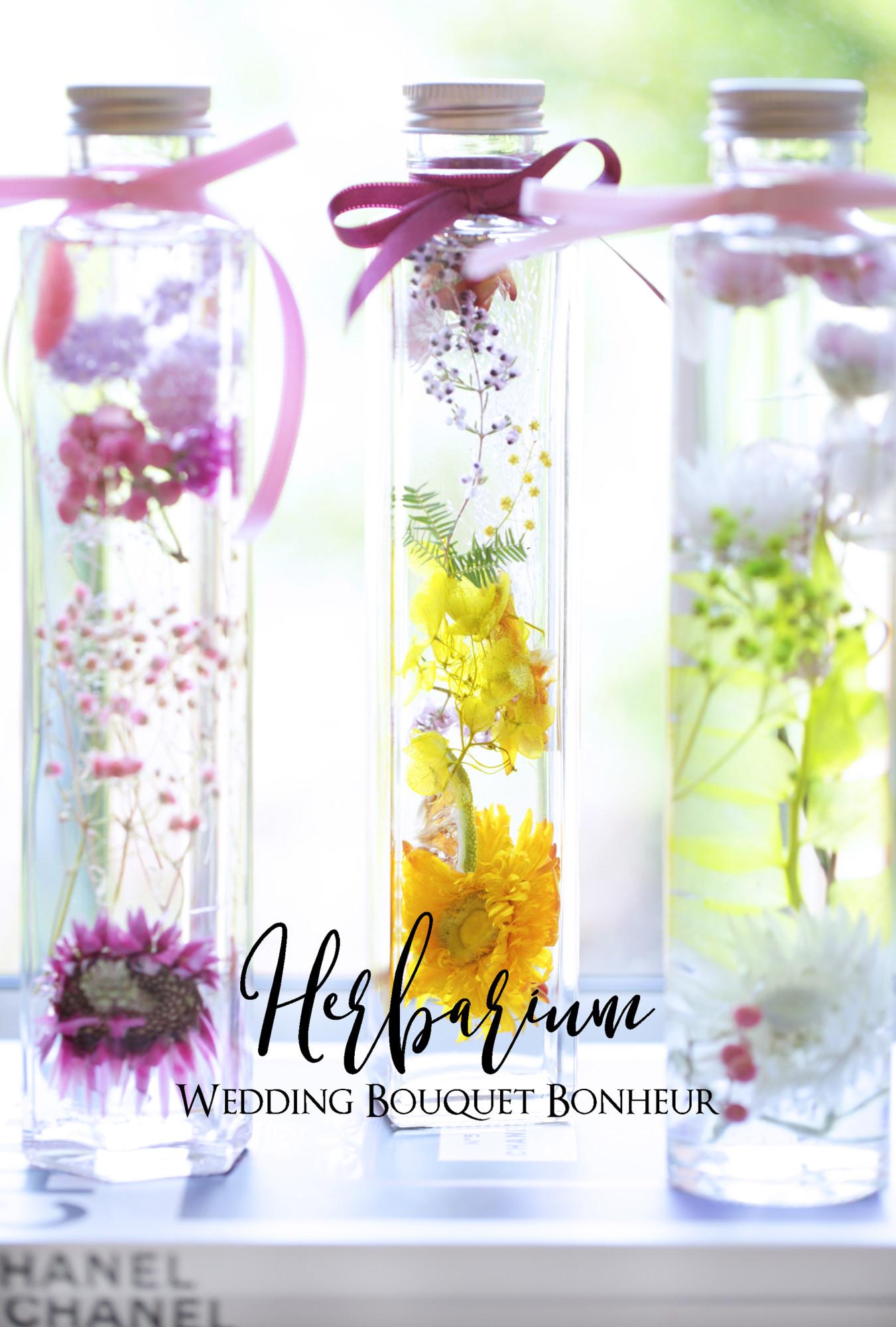 b_herbarium20180409_1